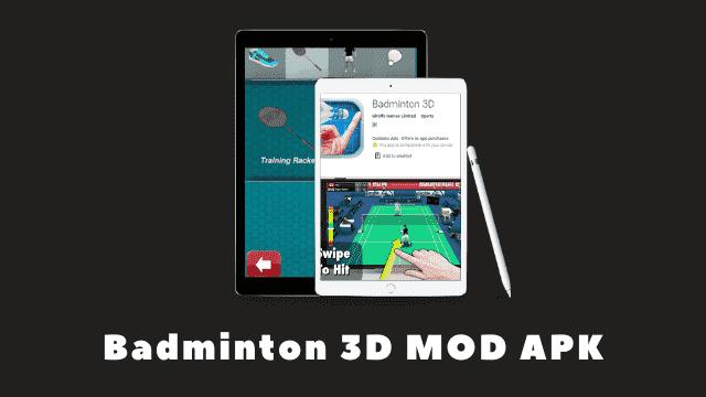 Badminton 3D Cover