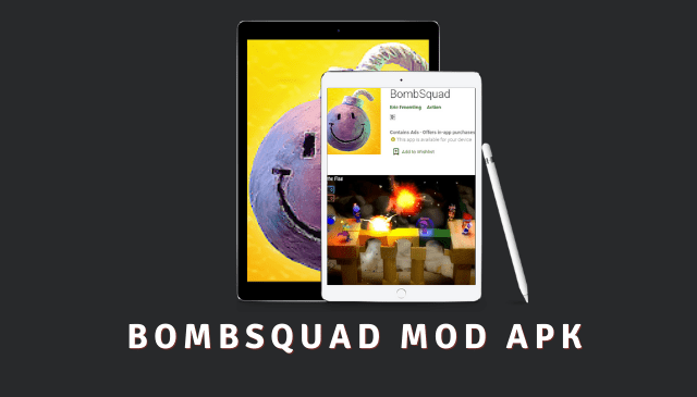 BombSquad Cover