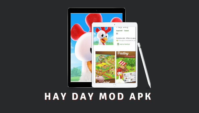 Hay Day Cover