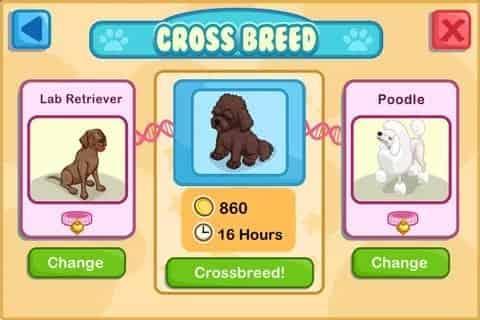Pet Shop Story Pet Shops