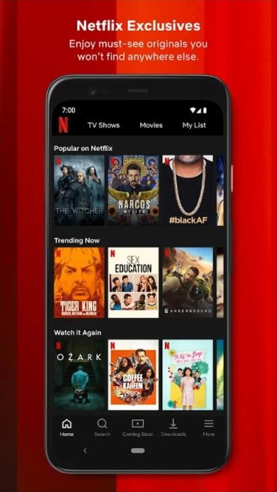 Netflix Premium Unlocked